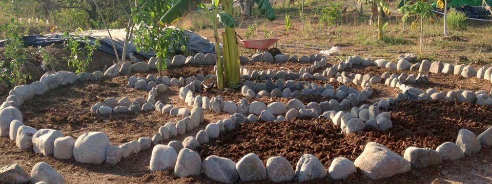 Mandala Keyhole Garden
