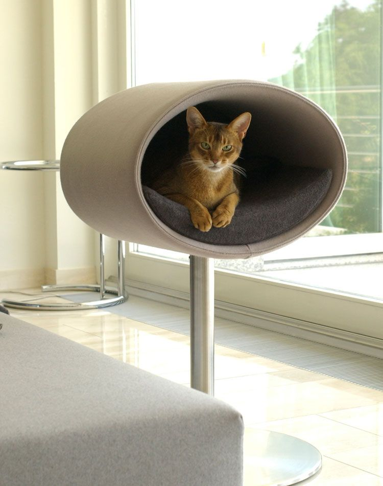 Nice Modern Cat Beds   Rondo By Meyer   DigsDigs