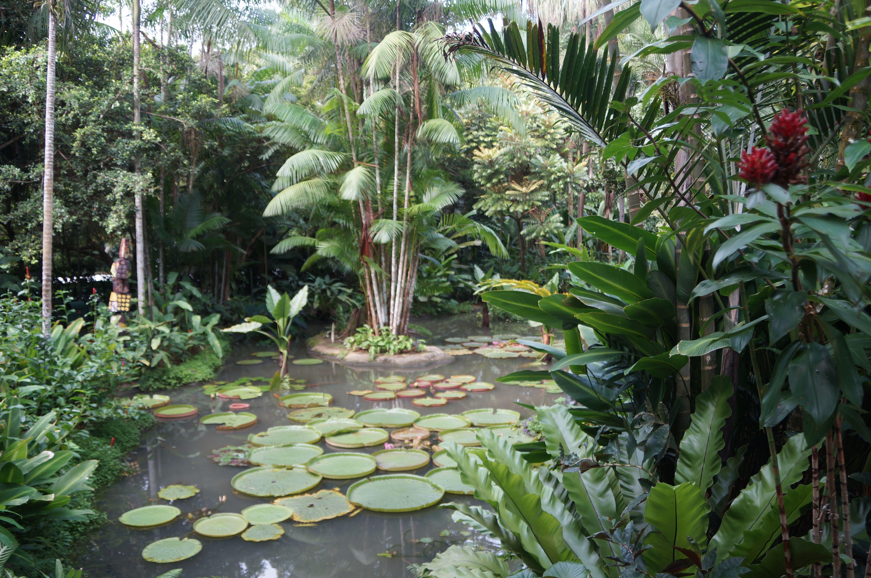 fe5b5453b6243e64f95e10d4ae38f796 - Baton Rouge Garden Center At Independence Botanical Gardens