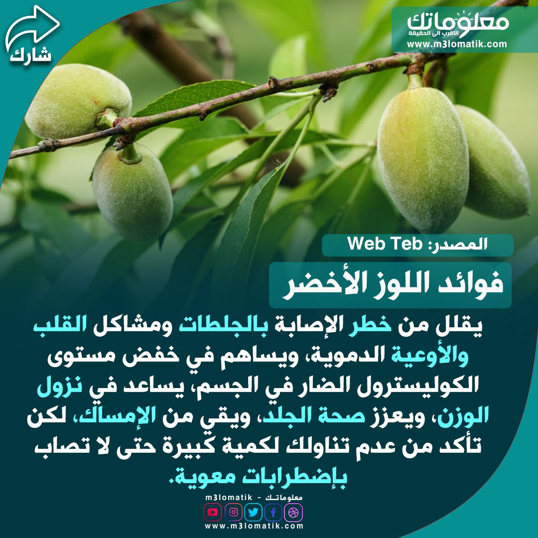 اللوز الاخطر Fruit Pear