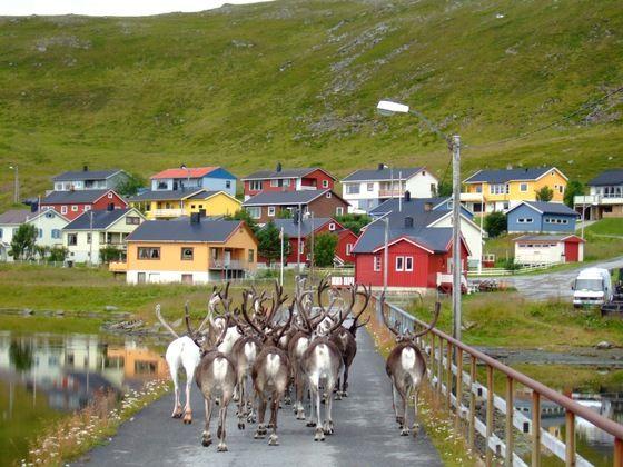 """""""Traffico al nord"""" ultima #twitpic di stamattina dalla Norvegia, scattata da Ziiba... altro che la Salerno-ReggioCalabria! #LOL"""
