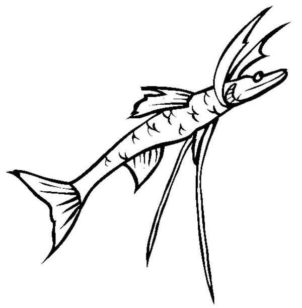 Fish Tripod Sea Monster Coloring Page