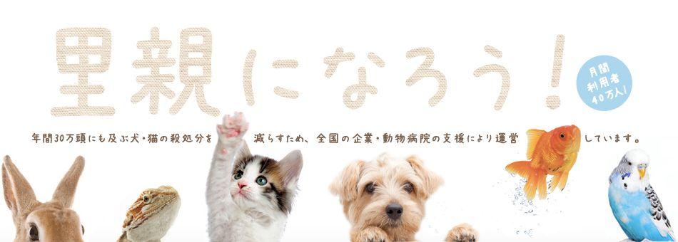 ペットの里親募集情報 ペットのおうち 月間利用者40万人 里親 ペット 動物保護