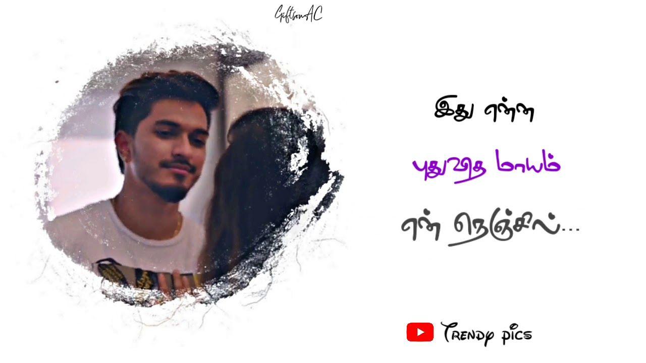 Pogiren Whatsapp Status Mugen Rao Tamil Album Song Trendy Pics Album Songs Songs Love Songs Lyrics