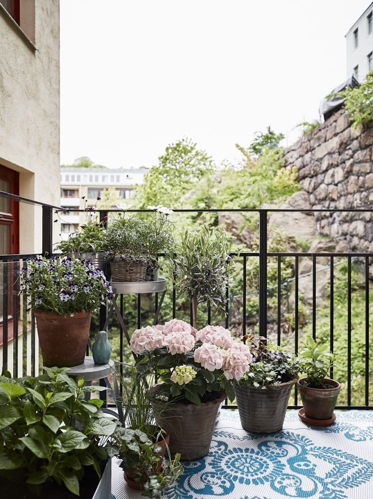 Luxury Garden On Apartment Balcony