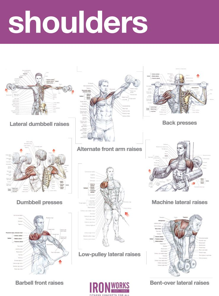 Abs And Shoulders Workout Examples Workout