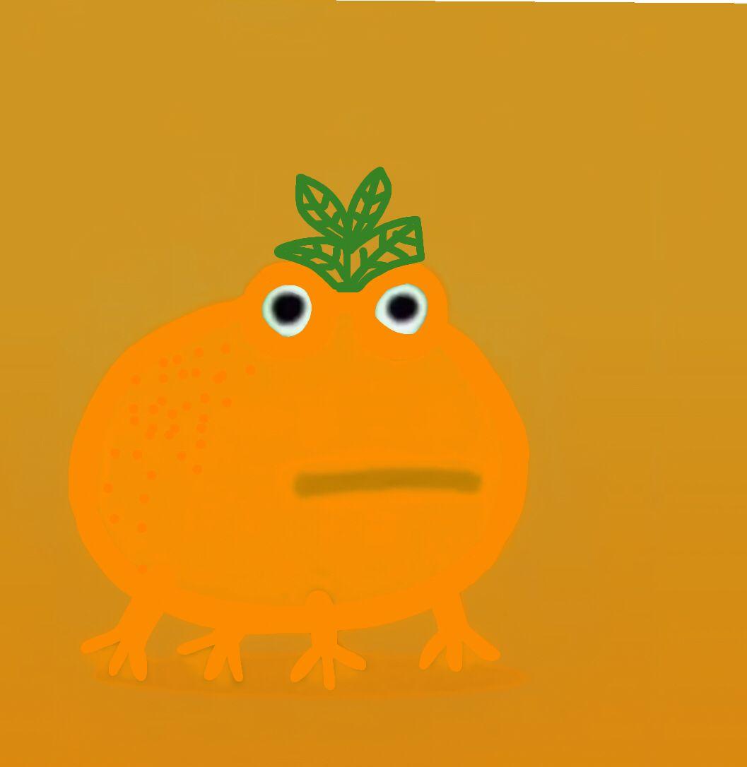 Orange Frog Frog Meme Cute Patterns Wallpaper Cartoon Wallpaper