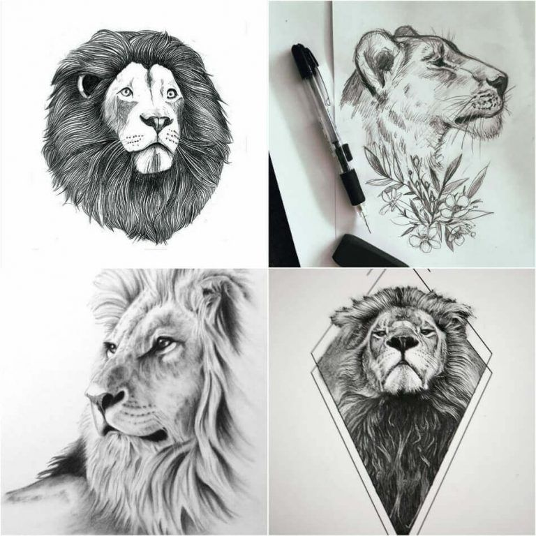 Lion Tattoo Meaning Lion Tattoo Ideas For Men And Women With Photos Lion Tattoo Meaning Mens Lion Tattoo Lion Tattoo Design