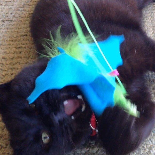 Baby Batnip Catnip Cat Toy