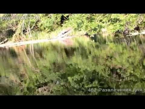 Прогулка по реке Северский Донец 5