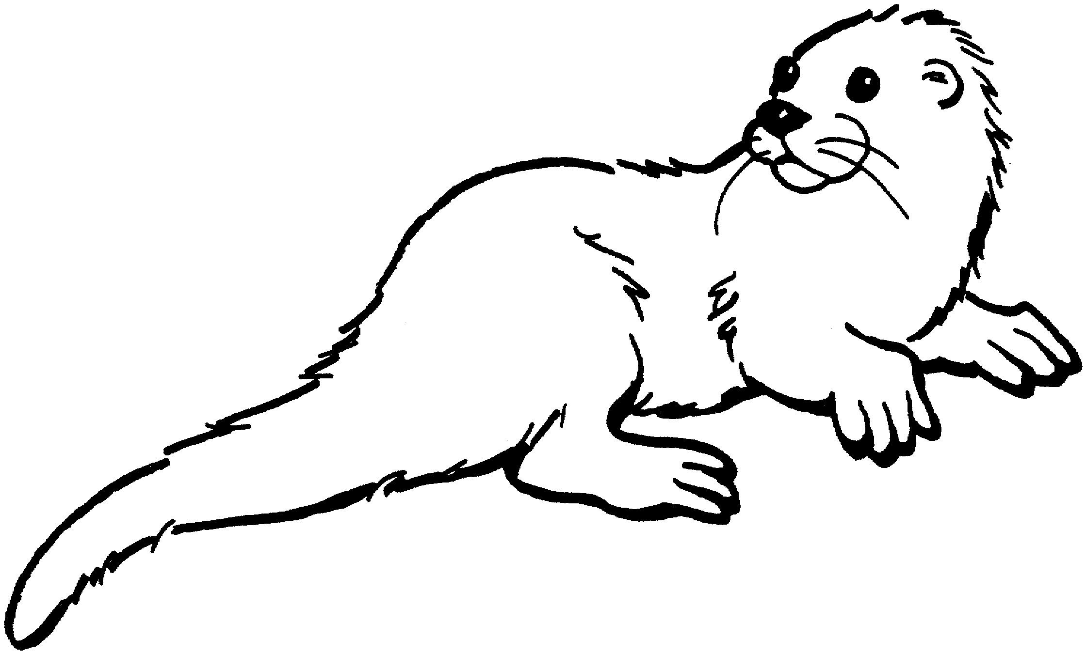 25 Great Image Of Otter Coloring Pages Otters Animal Coloring