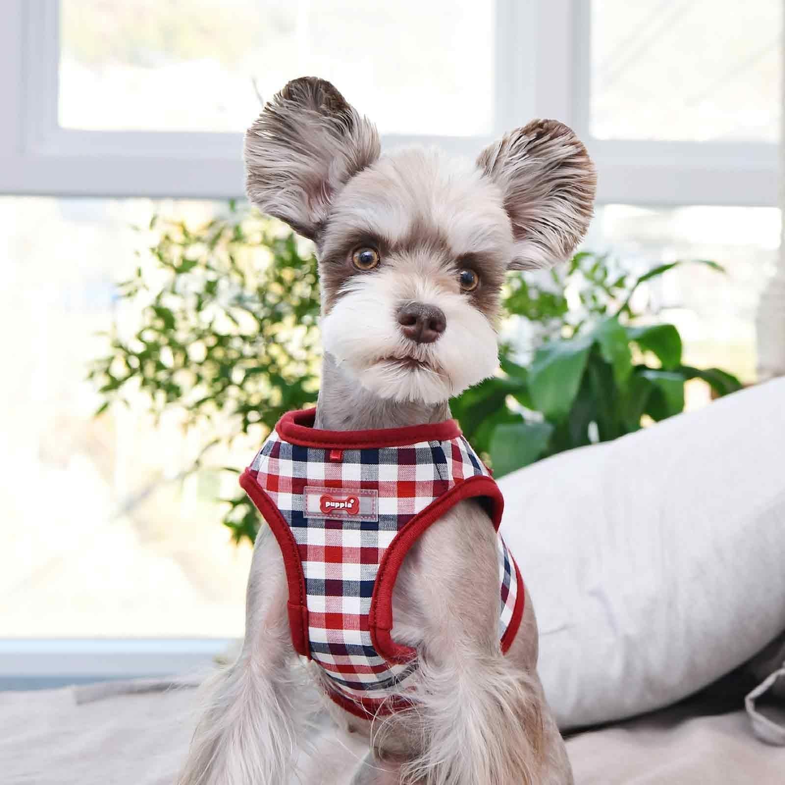Puppia Neil Dog Harness B Vest Wine New Check Pattern At D4dogz