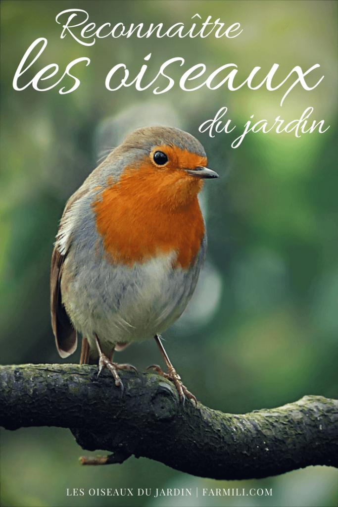 Le Nichoir  Oiseau Binette  Jardin