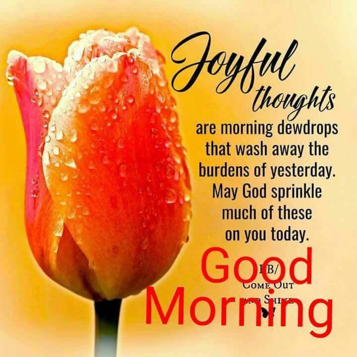Good morning greetings gud morning 1 pinterest morning good morning greetings m4hsunfo