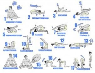 hatha yoga asanas and its benefits in dailed  hatha yoga