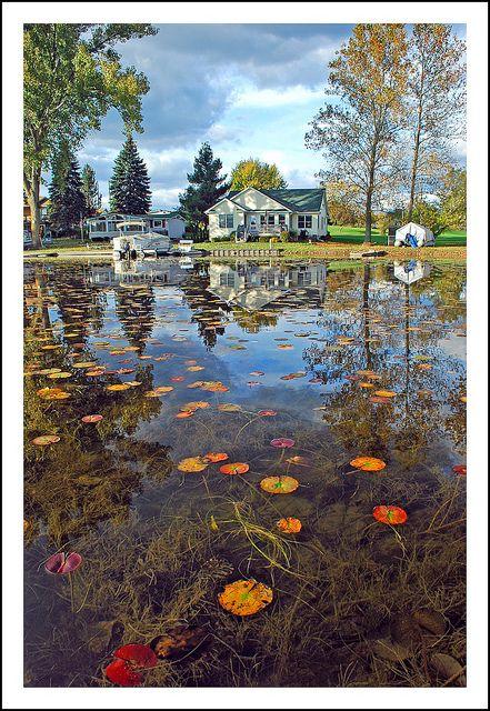 fe5f0b2881ba4eb5b4ba0396431fb2f9 - Hidden Lake Gardens Irish Hills Mi