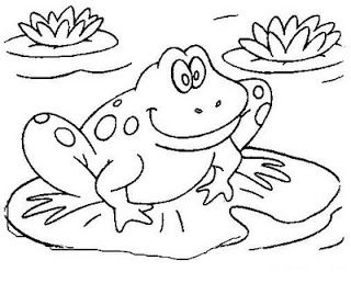It S Hard To Be Green Frog Coloring Pages Animal Coloring Pages