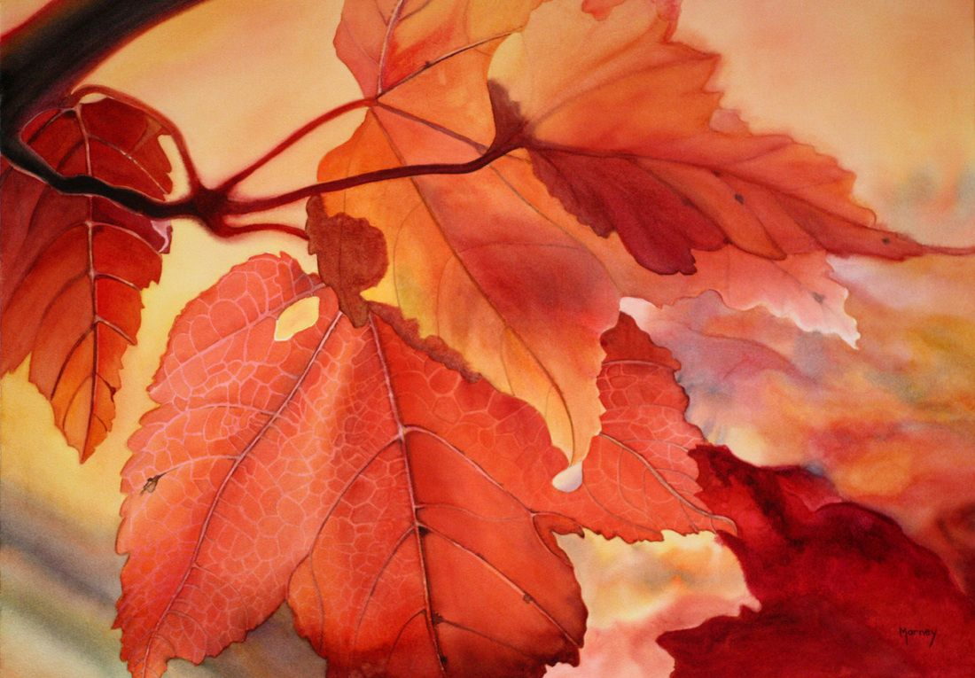October Glory II<br>watercolour painting by Marney Ward