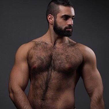 Beard gay porn