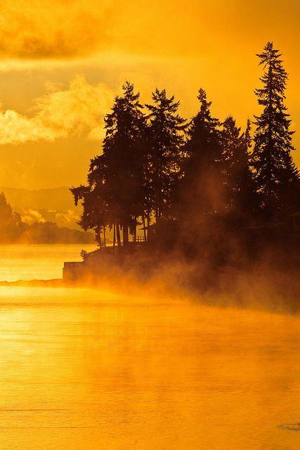 Sunrise Illuminating Mist of Rich Passage - Puget Sound, Washington