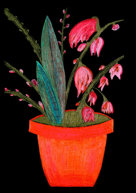 Blumenbild In 2020 Art Painting Planter Pots