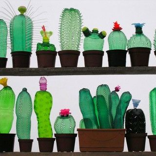What Can Be Made From Pet Bottle – Mimuu.com