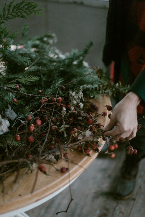 Winter Foraging | Kinfolk Gillian Stevens Photography