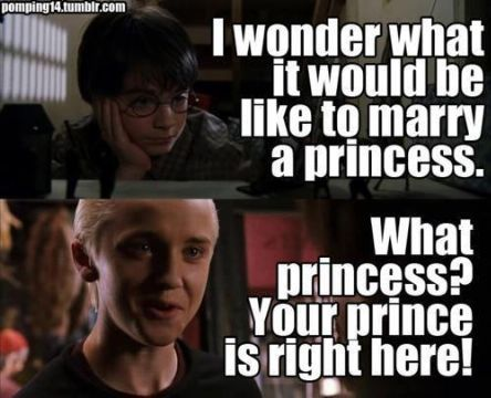 Funny Harry Potter Memes Draco : Everlasting bond chapter drarry harry potter and draco