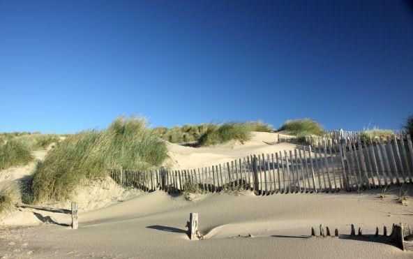 The sun-kissed dunes of Camber on a summers day