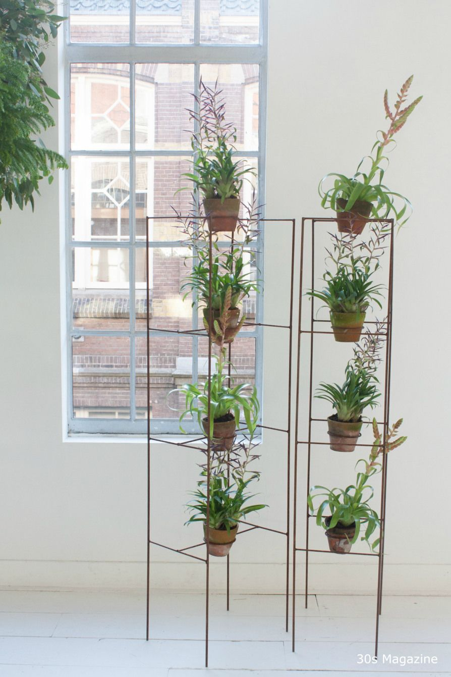 trends for decorating with plants and flowers pinterest