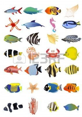 Collection Of Marine Animals, Illustration Royalty Vrije Cliparts, Vectoren, En Stock Illustratie. Pic 9728198.