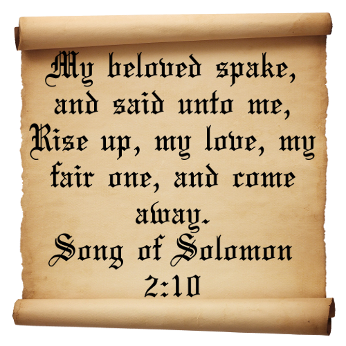 Quotes Of Love Song Of Solomon 210 Something I Would Like Tattooed