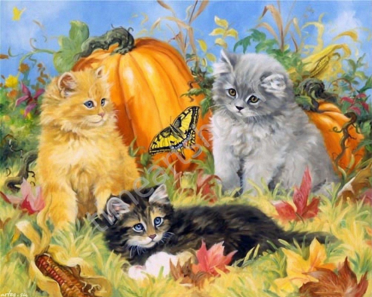 Назови известные тебе породы кошек найди их изображения открытки фото репродукции, надписями