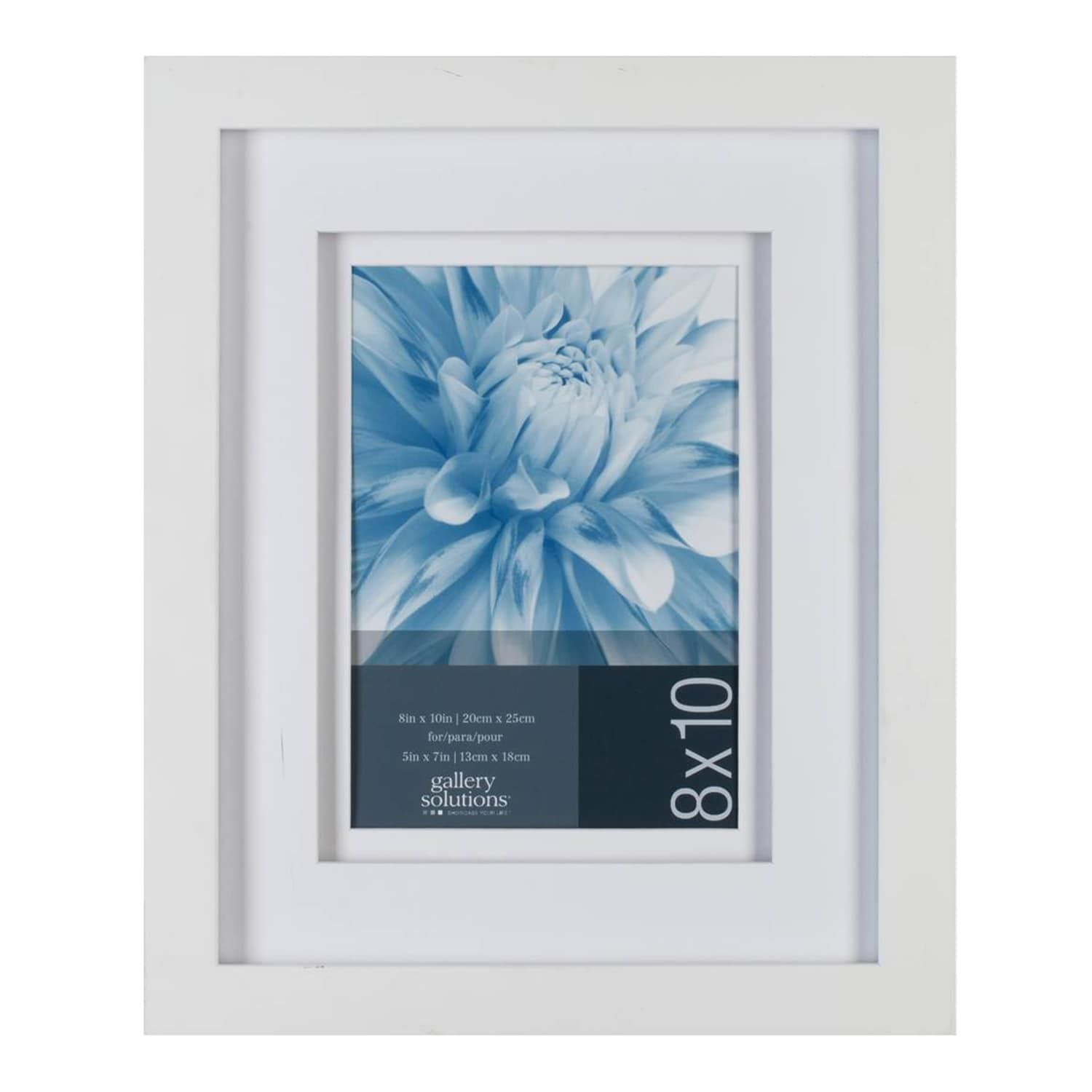 Gallery Solutions 8 X 10 Matted Frame Solutions Gallery Frame Matted Frames On Wall