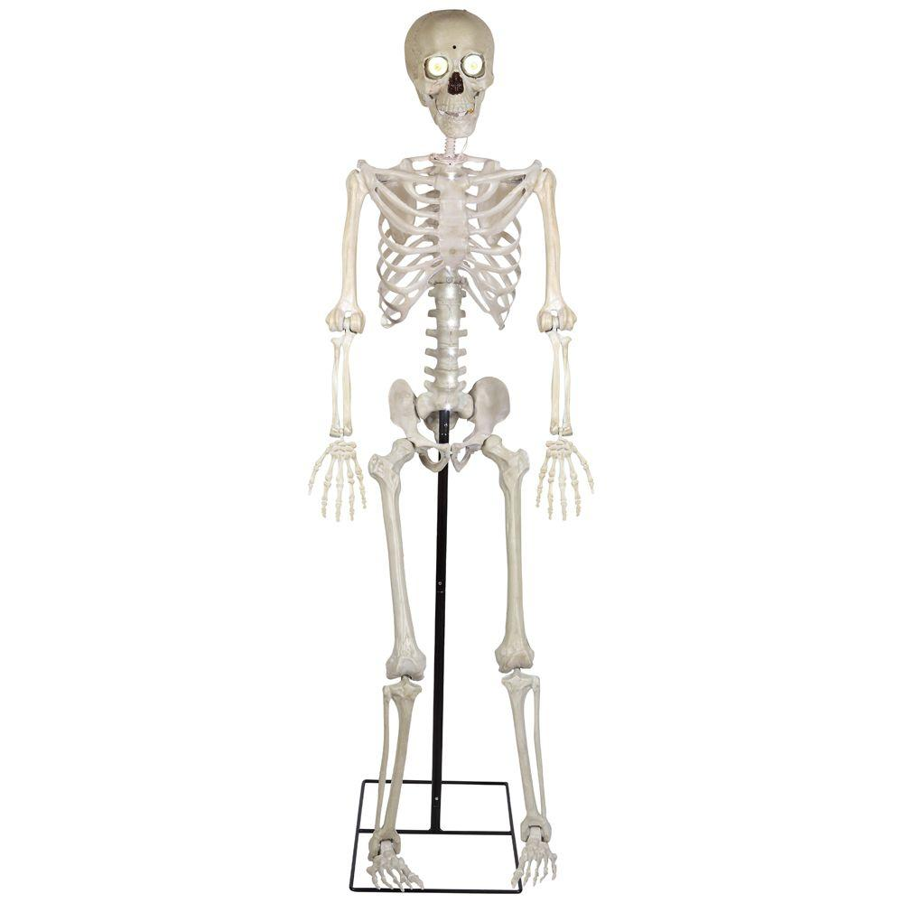 5 Ft Life Size Animated Kd Bony Tony With Mic With Images