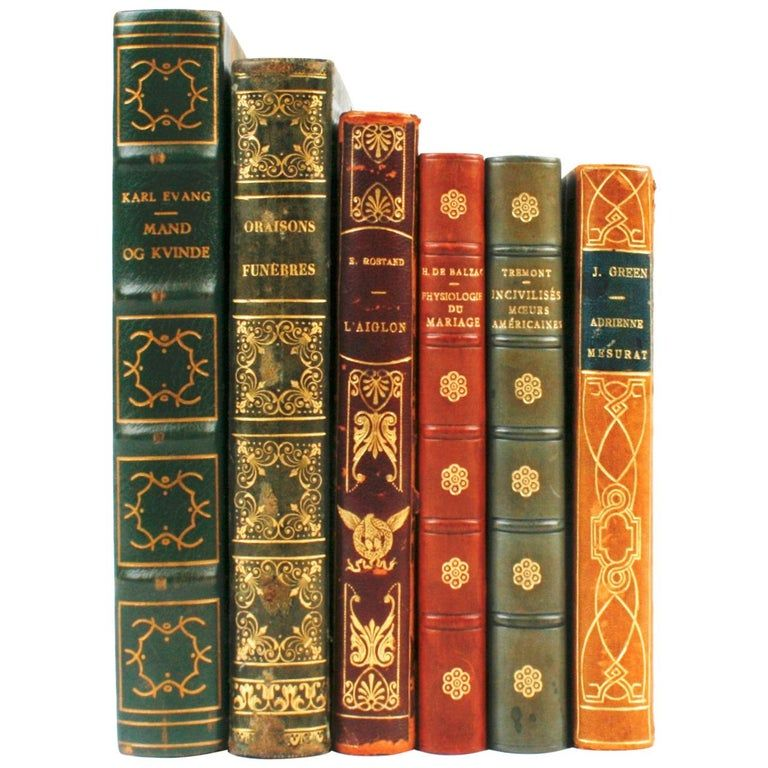 Collection of leather bound books in french and danish in