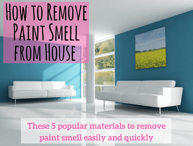 How To Remove Paint Smell From House Home Tips Home Decor