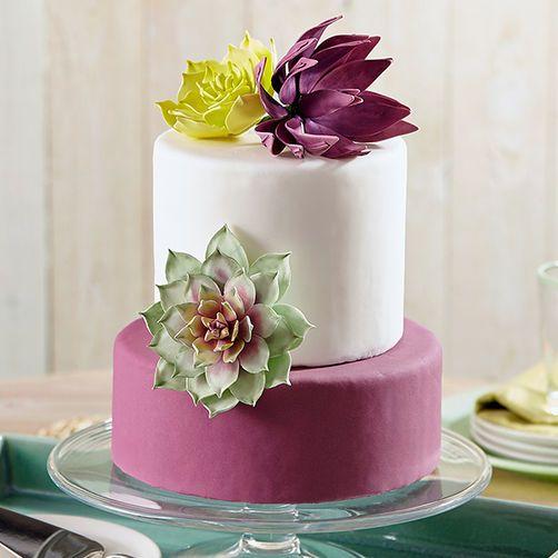 Succulents Trio Cake