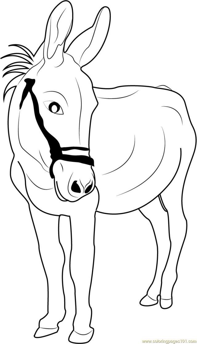 Marvelous Picture Of Donkey Coloring Page Coloring Pages Free