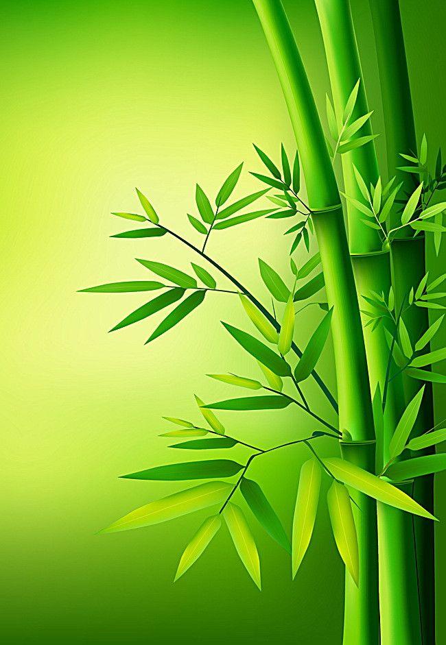 швейцарского фигуриста картинки бамбук для телефона эти люблю