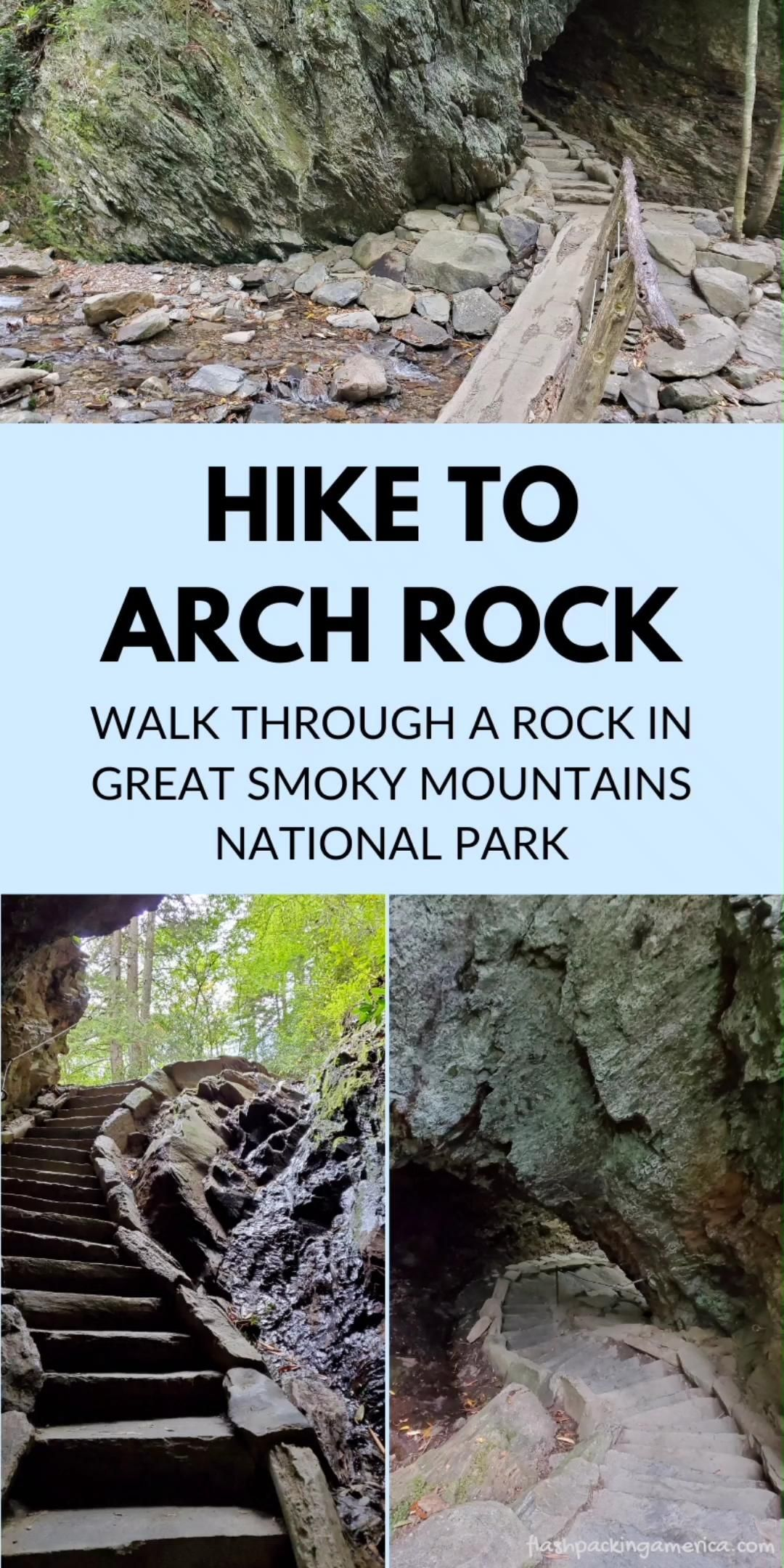 Hiking trail in Great Smoky Mountains National Par
