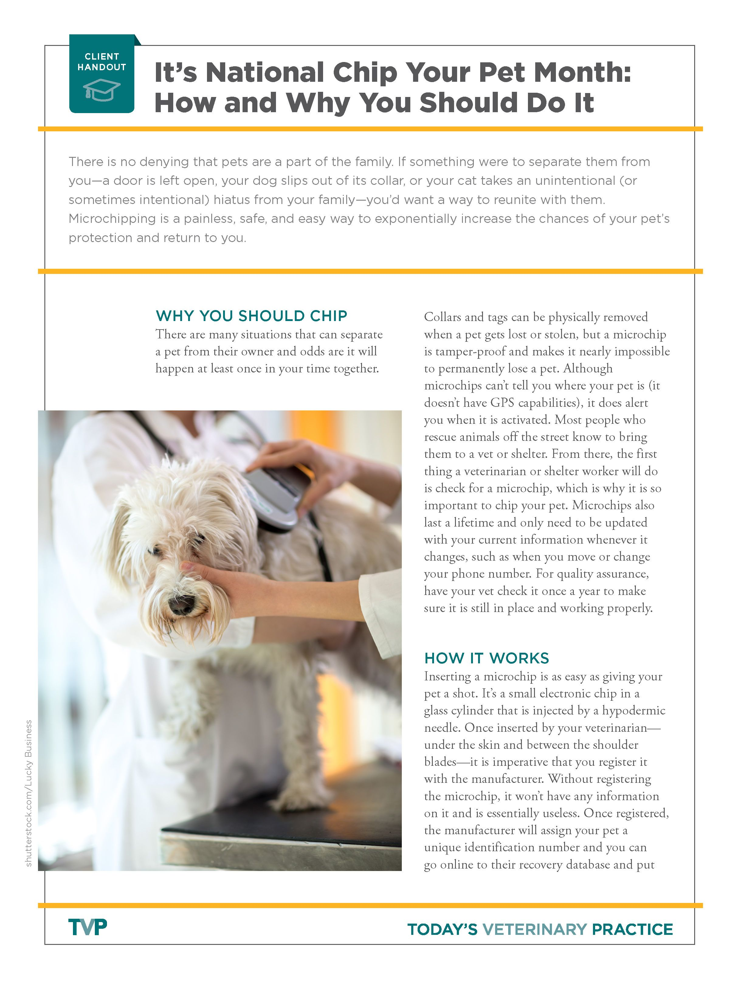A Veterinary Clinic Handout For Clients About The Importance Of Microchipping Pets Veterinary Clinic Pets Handouts