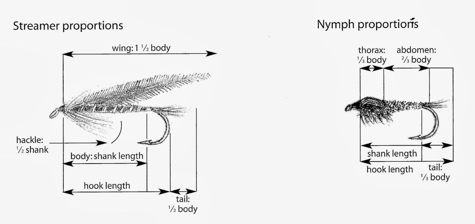 Fly Fishing with Doug Stewart: Fly Tying Proportion Illustrations ...