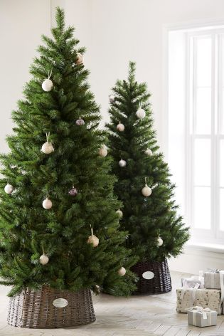 Christmas Decs 7FT Forest Pine Tree From Next