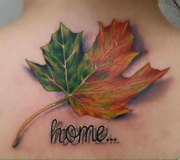 Pin By Maureen Ebaugh On Tattoo Ideas Tattoos Maple Tree