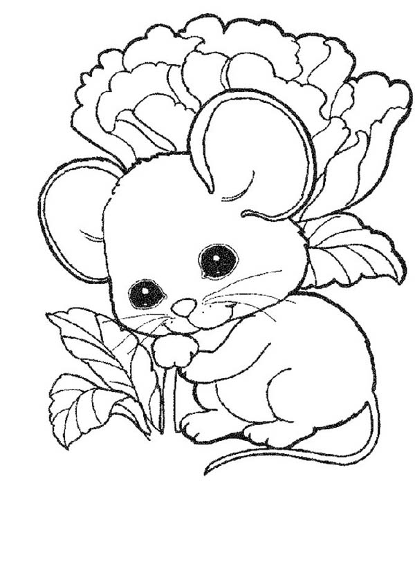 Cute Mouse And Rat Baby Coloring Pages Bulk Color Animal Coloring Pages Dog Coloring Page Cute Coloring Pages
