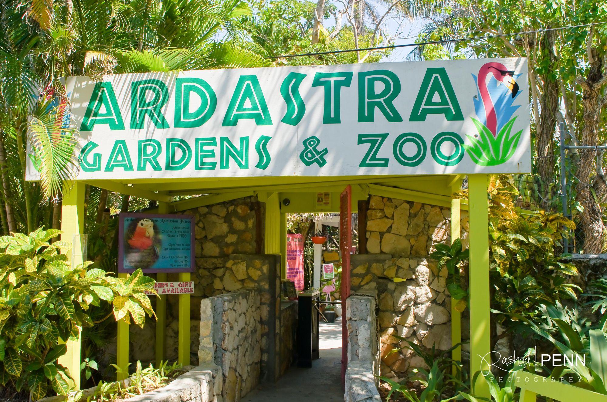 fe68d7cbe11570b7d2bed4422c445a95 - Nassau Bahamas Ardastra Gardens And Zoo