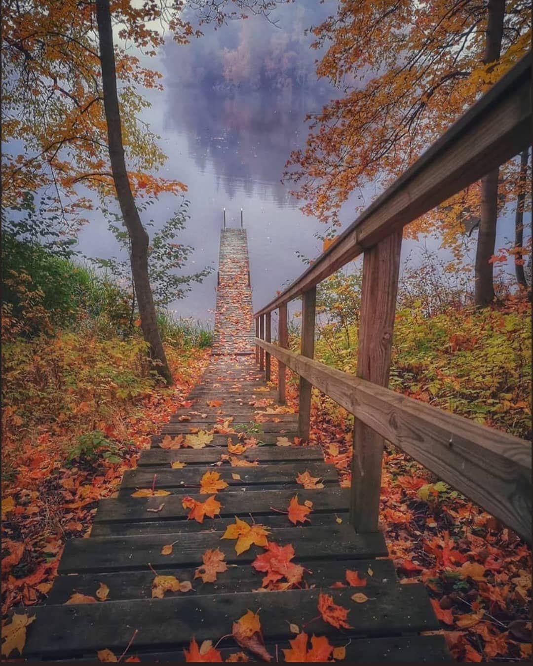 #magicpict#nature_perfection#dametraveler#heatercentral#bevisuallyinspired#agameoftones#tree_magic#stunning_shots#landscapelovers#travelgram#awesome_photographers#FreedomThinkers#WeLiveToExplore#visualsgang#teamcanon#earthpix#hot_shotz#fantastic_earth#special_shots#worldbestgram#dream_image#fingerprintofgod#shotwithlove#rural_love#photoarena_nature#beautifulplaces#moodygrams#fantastic_earth#igs_photos#naturephotography#ig_enes_