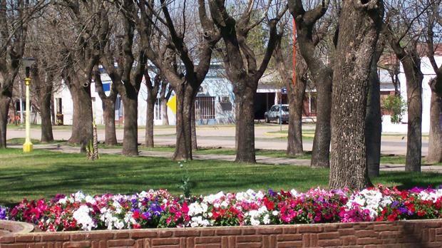Santa Fe: la colonia Belgrano ofrece tierras a familias jóvenes que quieran radicarse