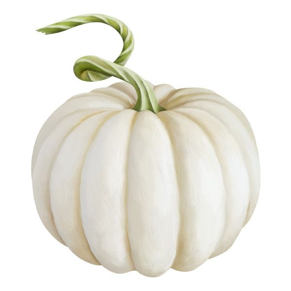 Element 9 Png Liked On Polyvore Featuring Autumn And Filler White Pumpkins Pumpkin Clipart Pumpkin Png